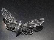 Cicada art concepts